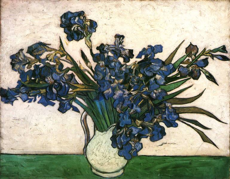 Gogh.irises-pink-gree