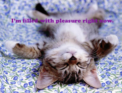 Pleasurekitten